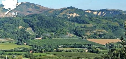 Albana di Romagna DOCG