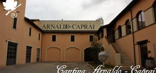 Cantina Arnaldo Caprai - Montefalco