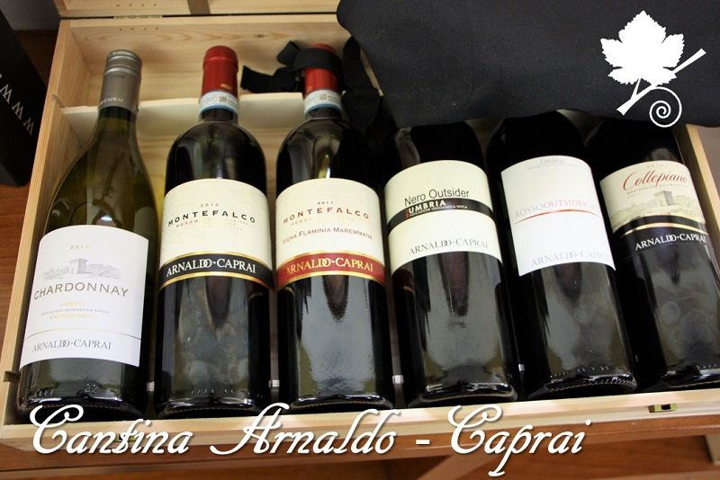 Cantina Arnaldo Caprai - tutti i vini della cantina