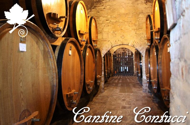 Cantine Contucci - Montepulciano