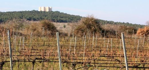 Castel Del Monte Nero di Troia Riserva DOCG