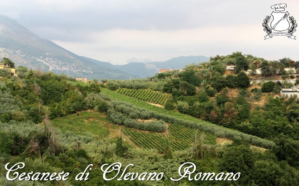 Cesanese di Olevano Romano DOC