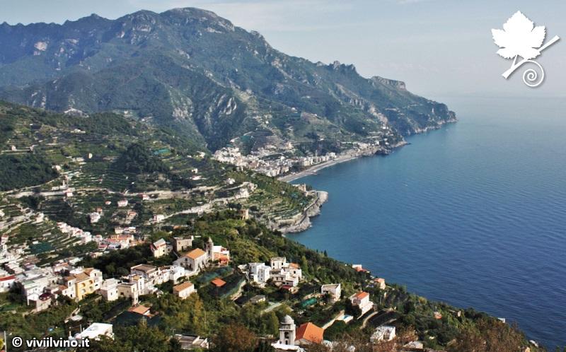 Costa d'Amalfi DOC coltura eroica
