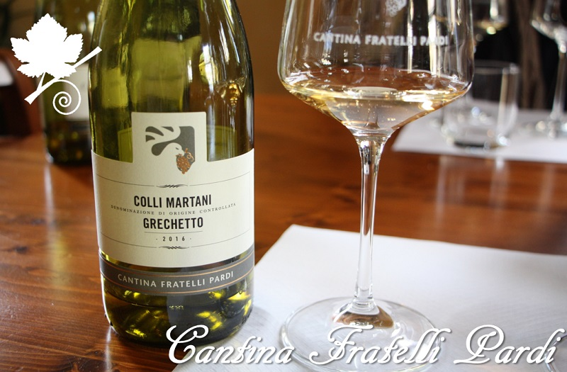Grechetto Colli Martani DOC del 2016