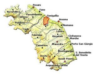Lacrima di Morro d'Alba DOC area