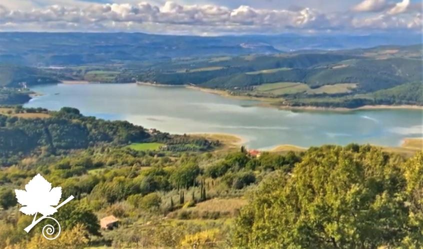 Lago di Corbara DOC