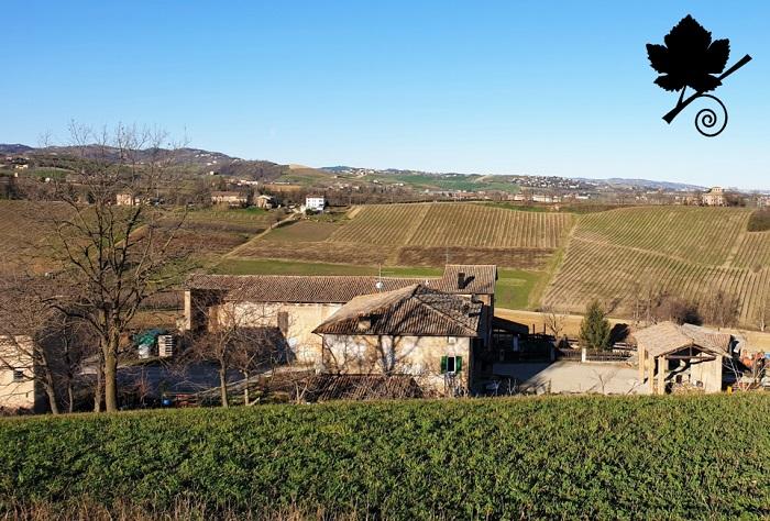 Lambrusco Grasparossa di Castelvetro DOC 2