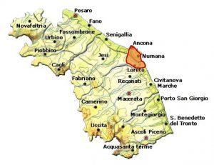 Rosso Conero DOC area