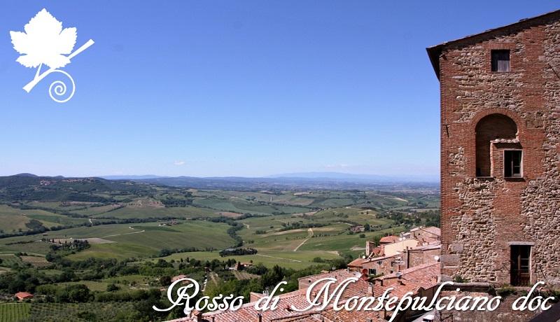 Rosso di Montepulciano DOC - paesaggio
