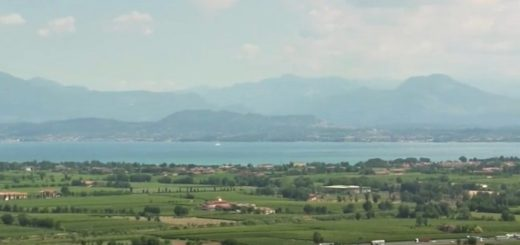 San Martino della Battaglia DOC