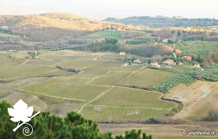Vin Santo di Montepulciano DOC vigneti