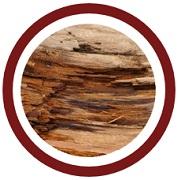 legno di cedro