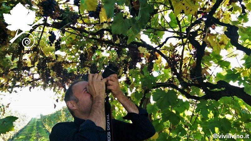 Fotografare il vino- Fabio Nelli