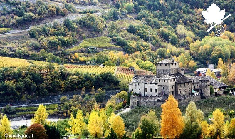 Valle d'Aosta DOC Torrette con castello Sarriod de La Tour