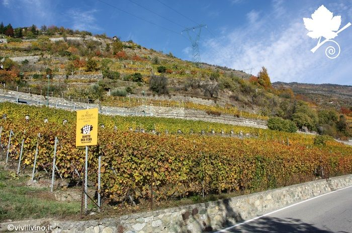 Valle d'Aosta DOC sottozona Torrette - Route des vins