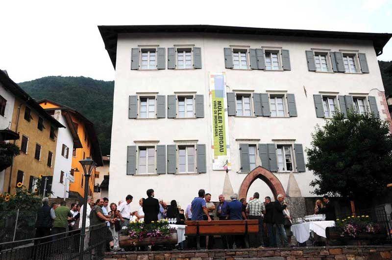 Valle di Cembra Trentino Muller Thurgau - Palazzo Maffei