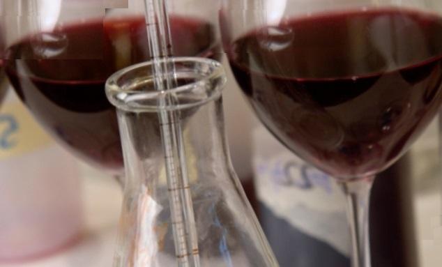 Barbera d'Asti - analisi chimico fisiche del vino