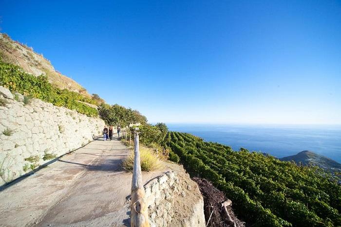 Andar per Cantine - Ischia