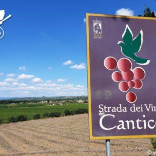 Strada del Vino del Cantico