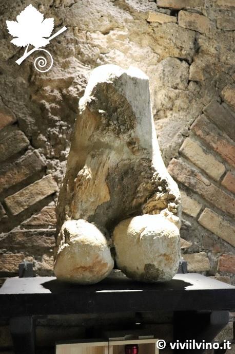 Cantina Castello di Torre in Pietra - Osso di Mammouth