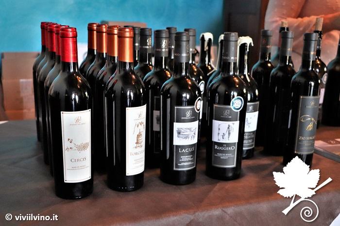 Cantina Podere sul Lago - i vini