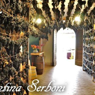 Cantina Serboni di Serrapetrona - Vernaccia nera