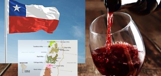 Cile 2018 - le nuove DO ed il territorio del vino