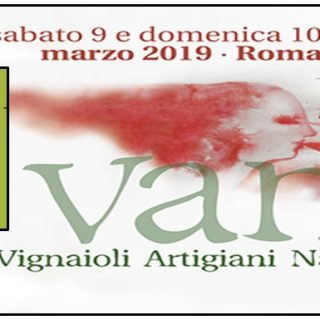 VAN Vignaioli Artigiani Naturali 2019 Roma