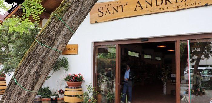 Cantine di Sant'Andrea - enoteca