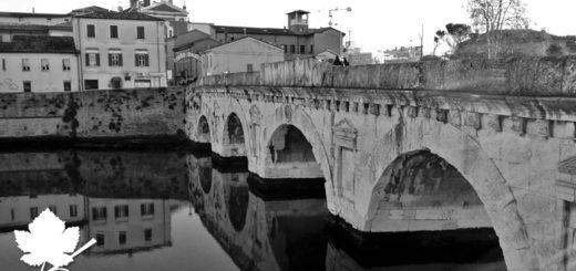Colli di Rimini DOC