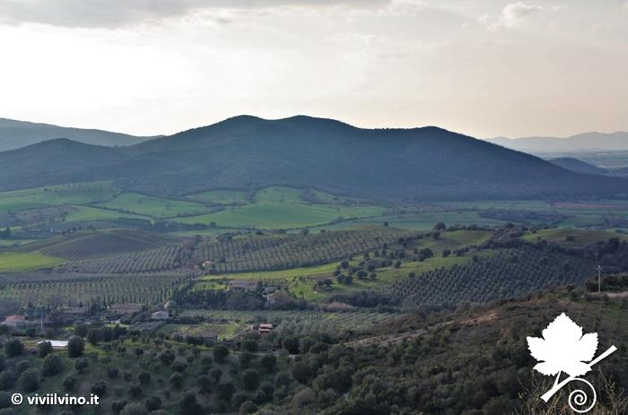 Maremma Toscana DOC