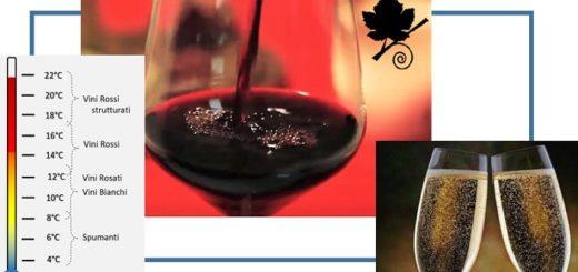 Come la temperatura influenza il sapore del vino