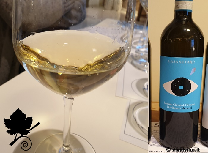 I vini del Vesuvio - Lacryma Christi del Vesuvio DOC Bianco Munazei Casa Setaro