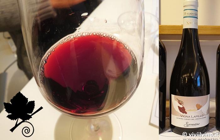 I vini del Vesuvio - Lacryma Christi del Vesuvio DOC Rosso 2016 - Vigna Lapillo - Sorrentino