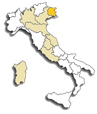 Friulano (Tocai Friulano) area di diffusione del vitigno