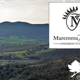 Maremma Toscana DOC - modifica del disciplinare