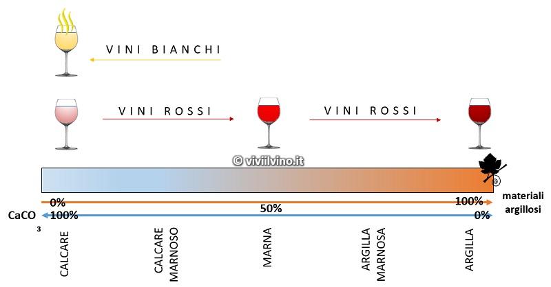 Influenza del suolo nel vino - terreni calcarei, marnosi e argillosi