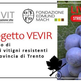 Il Progetto Vevir - studio di nuove varietà resistenti in provincia di Trento